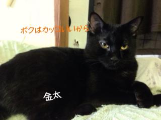 image-20130926142557.png