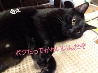 image-20131019083025.png