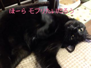image-20131019083035.png